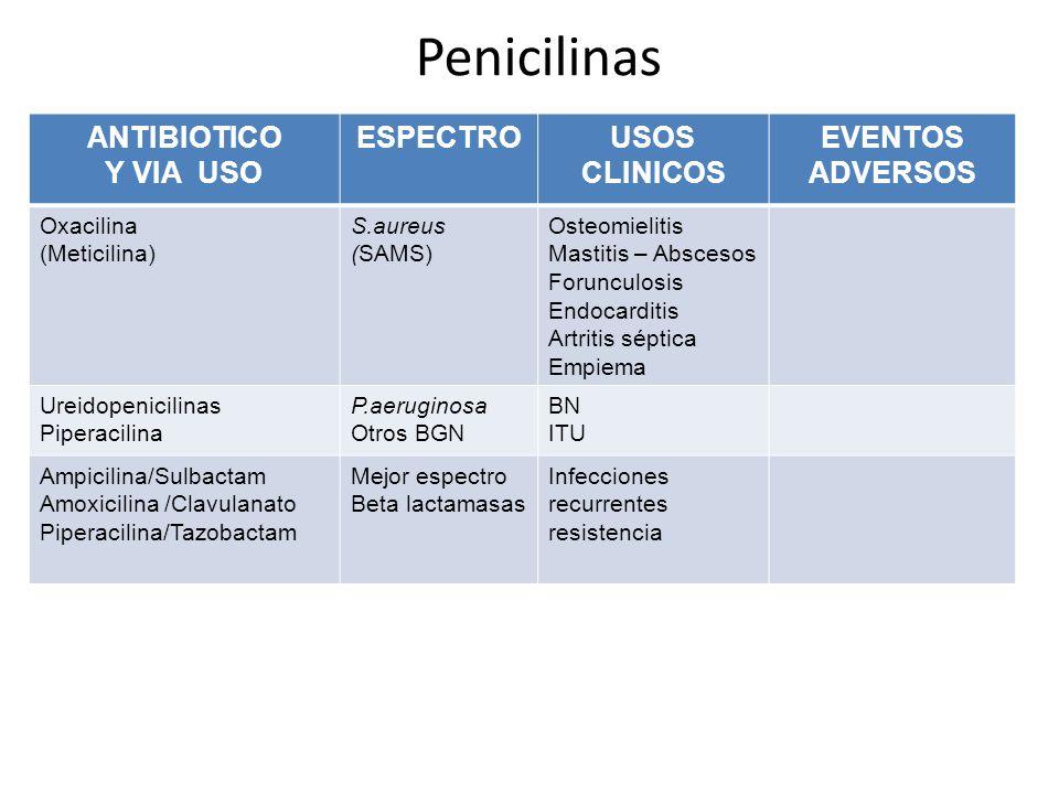 Penicilinas ANTIBIOTICO Y VIA USO ESPECTROUSOS CLINICOS EVENTOS ADVERSOS Oxacilina (Meticilina) S.aureus (SAMS) Osteomielitis Mastitis – Abscesos Foru