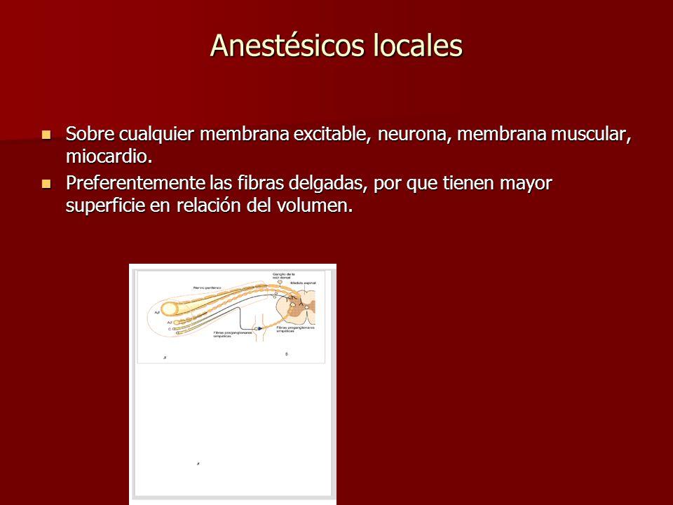 Anestésicos locales Sobre cualquier membrana excitable, neurona, membrana muscular, miocardio. Sobre cualquier membrana excitable, neurona, membrana m