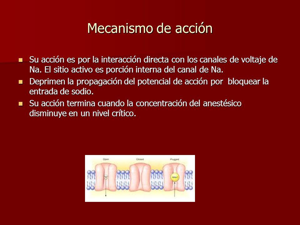 Mecanismo de acción Su acción es por la interacción directa con los canales de voltaje de Na. El sitio activo es porción interna del canal de Na. Su a