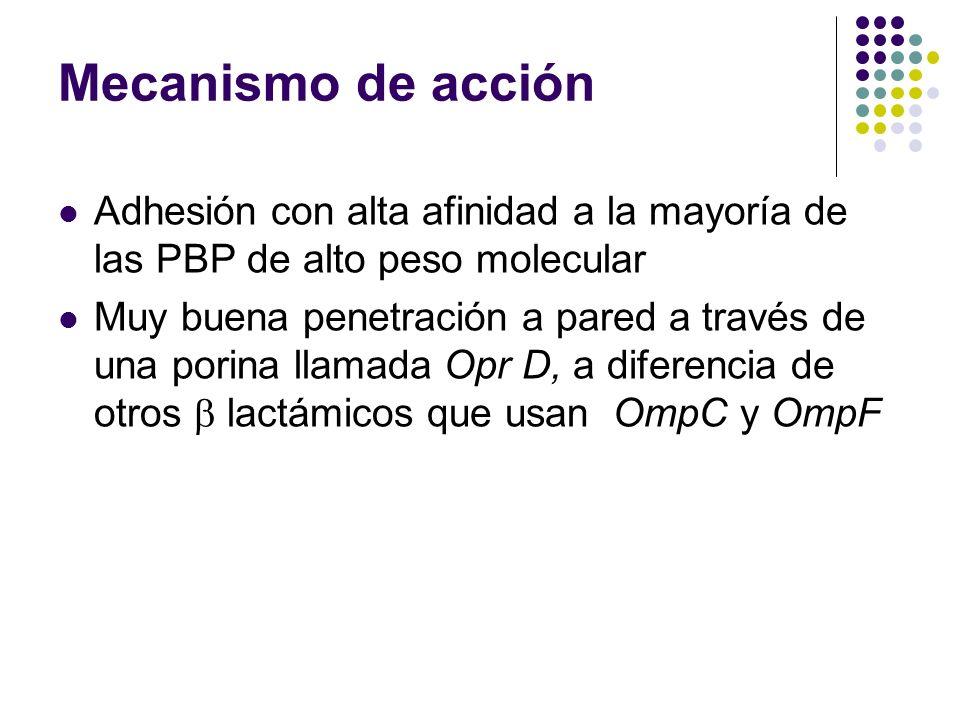 Mecanismo de acción Adhesión con alta afinidad a la mayoría de las PBP de alto peso molecular Muy buena penetración a pared a través de una porina lla