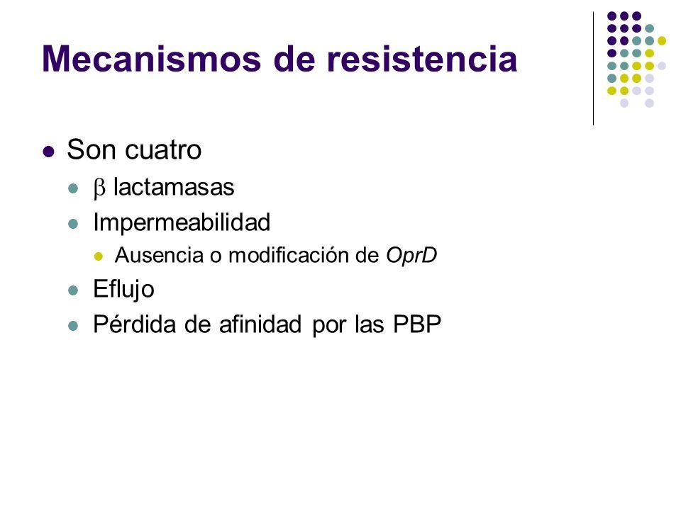 Mecanismos de resistencia Son cuatro lactamasas Impermeabilidad Ausencia o modificación de OprD Eflujo Pérdida de afinidad por las PBP
