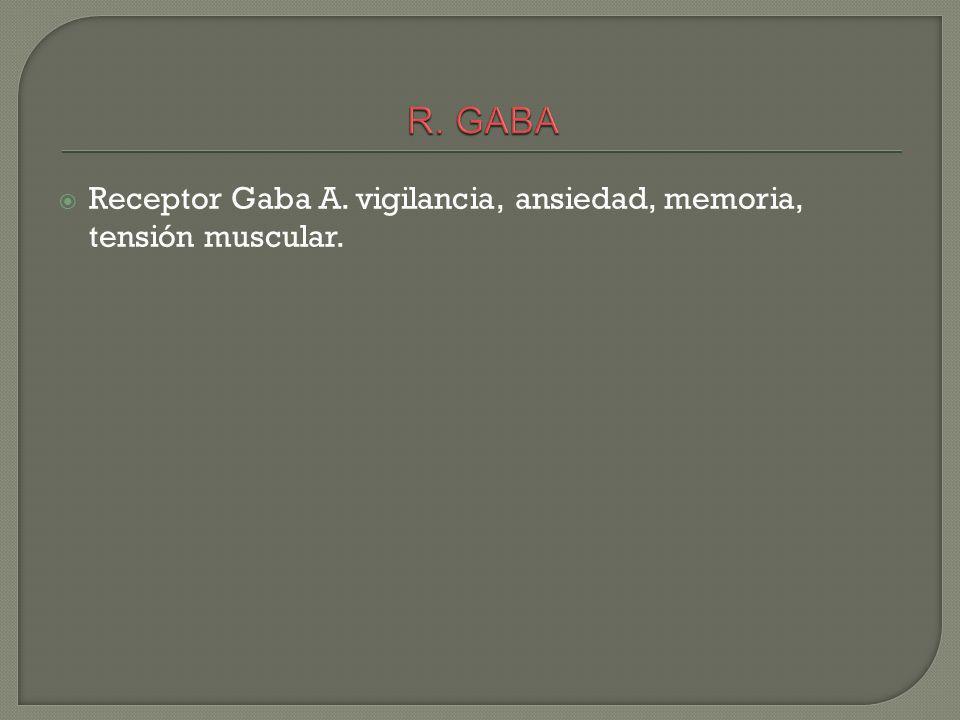Receptor Gaba A. vigilancia, ansiedad, memoria, tensión muscular.