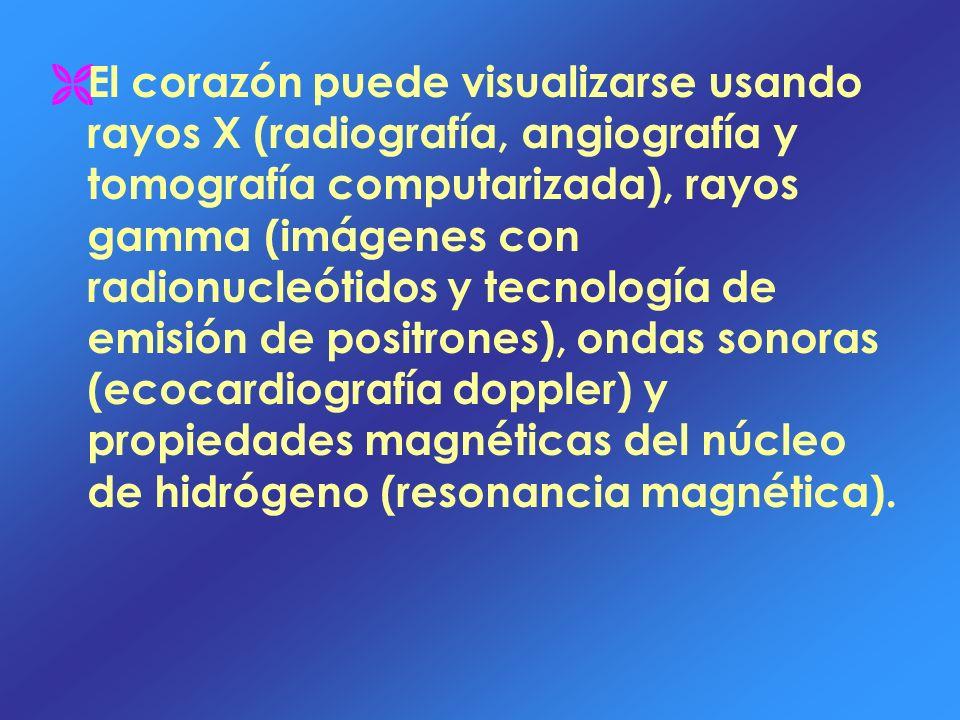 El corazón puede visualizarse usando rayos X (radiografía, angiografía y tomografía computarizada), rayos gamma (imágenes con radionucleótidos y tecno