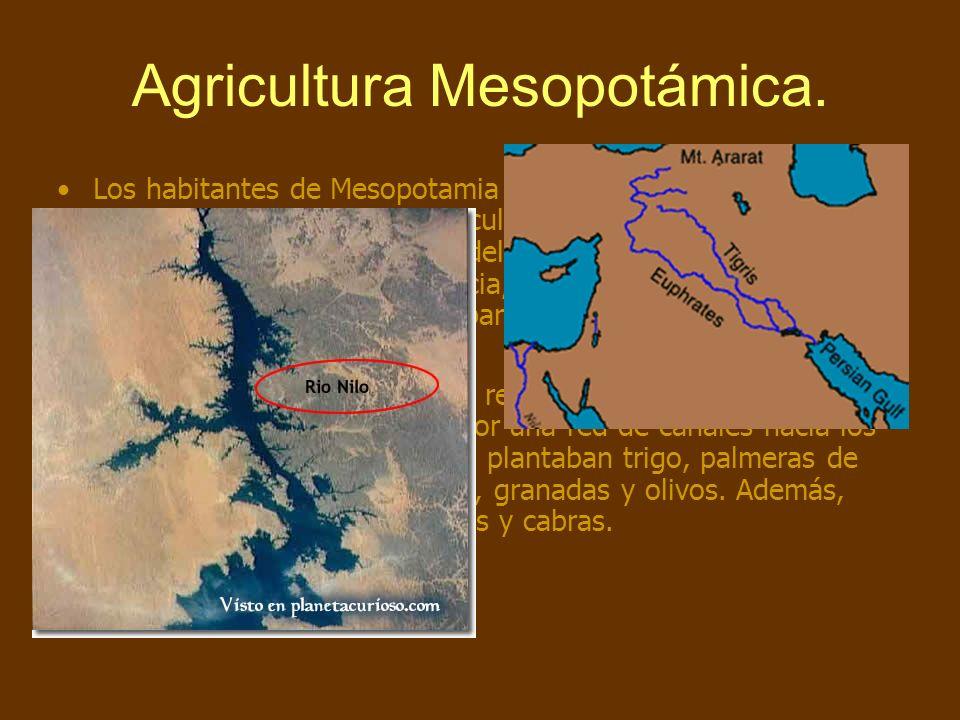 Agricultura Mesopotámica. Los habitantes de Mesopotamia descubrieron que podían aprovechar el agua para sus cultivos, obteniendo grandes beneficios. P