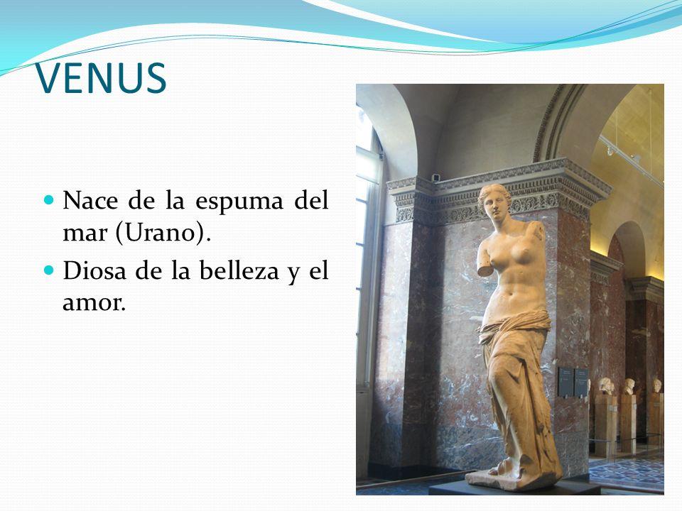 VENUS Nace de la espuma del mar (Urano). Diosa de la belleza y el amor.