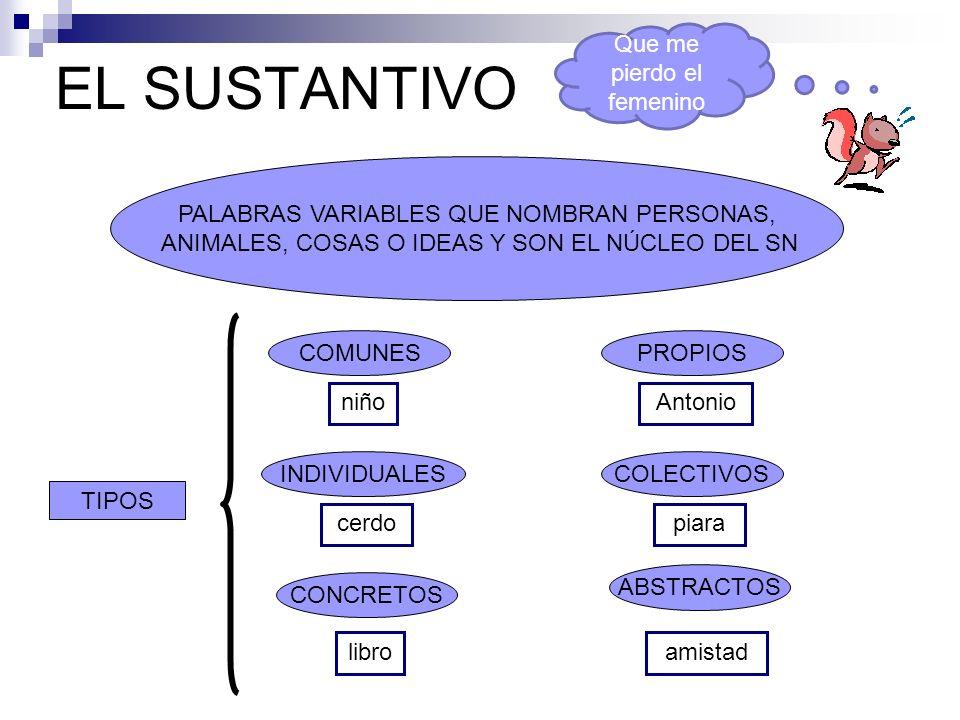 EL SUSTANTIVO PALABRAS VARIABLES QUE NOMBRAN PERSONAS, ANIMALES, COSAS O IDEAS Y SON EL NÚCLEO DEL SN TIPOS COMUNES ABSTRACTOS COLECTIVOS PROPIOS INDI
