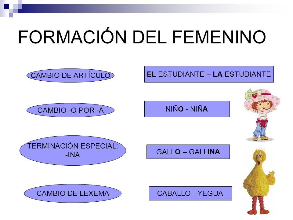FORMACIÓN DEL FEMENINO CAMBIO DE ARTÍCULO EL ESTUDIANTE – LA ESTUDIANTE TERMINACIÓN ESPECIAL: -INA NIÑO - NIÑA GALLO – GALLINA CAMBIO -O POR -A CAMBIO