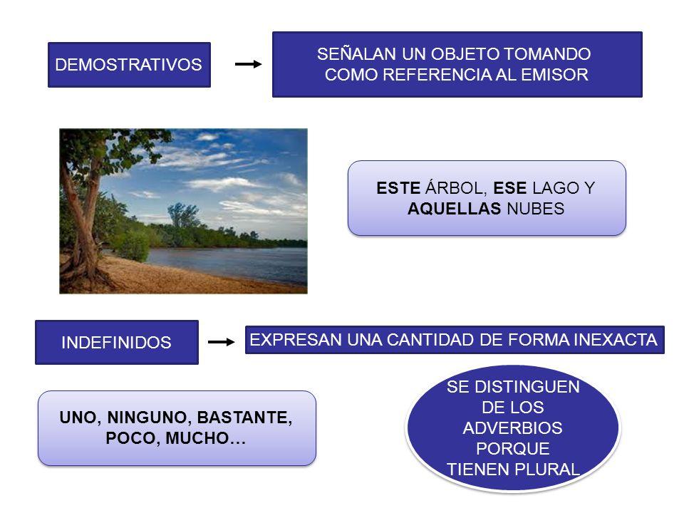 NUMERALES INTERROGATIVOS Y EXCLAMATIVOS PREGUNTAS O EXCLAMACIONES EXPRESAN UNA CANTIDAD DE FORMA PRECISA CARDINALES: INDICAN CANTIDAD ORDINALES: INDICAN ORDEN ¡1,2,3… HASTA EL INFINITO Y MÁS ALLÁ.