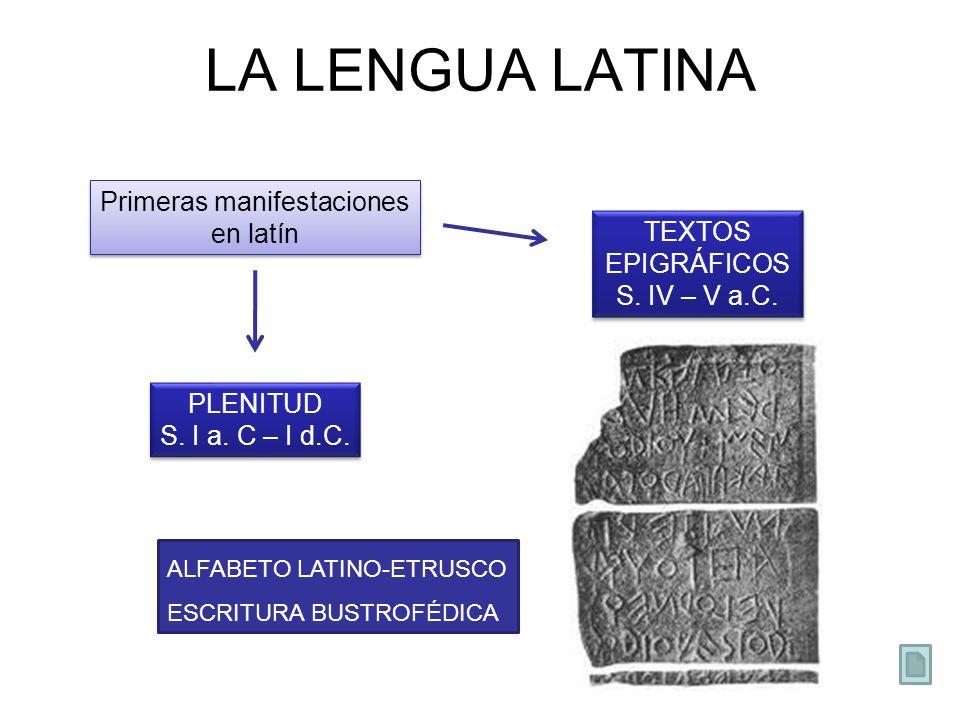 LA LENGUA LATINA Primeras manifestaciones en latín TEXTOS EPIGRÁFICOS S. IV – V a.C. TEXTOS EPIGRÁFICOS S. IV – V a.C. PLENITUD S. I a. C – I d.C. PLE