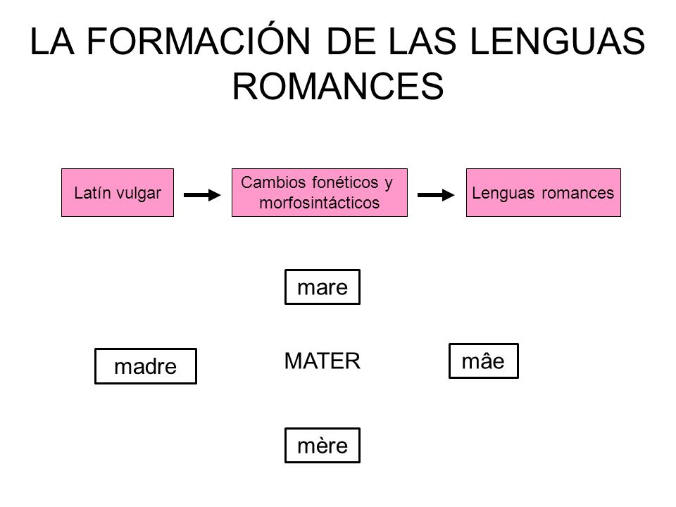 LA FORMACIÓN DE LAS LENGUAS ROMANCES Latín vulgarLenguas romances Cambios fonéticos y morfosintácticos MATER mâe mère mare madre
