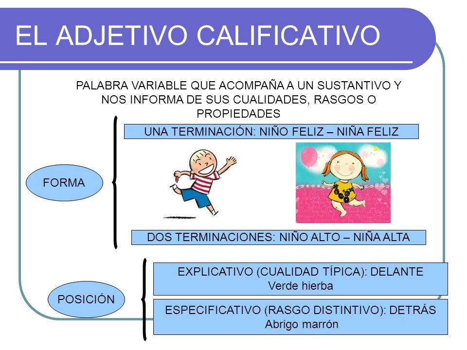 EL ADJETIVO CALIFICATIVO PALABRA VARIABLE QUE ACOMPAÑA A UN SUSTANTIVO Y NOS INFORMA DE SUS CUALIDADES, RASGOS O PROPIEDADES FORMA UNA TERMINACIÓN: NI