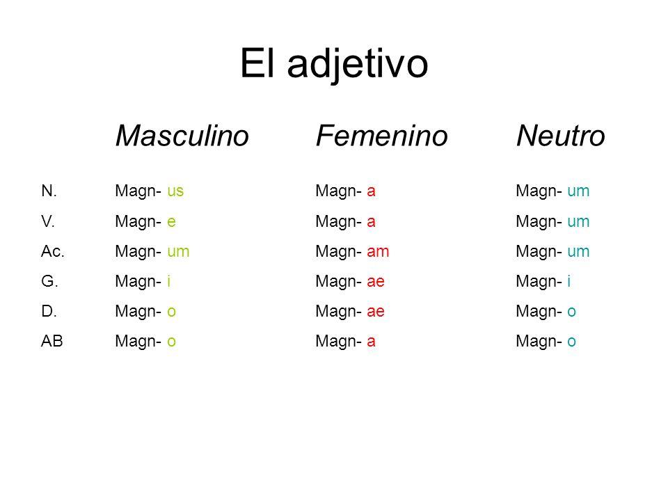 El adjetivo MasculinoFemeninoNeutro N. V. Ac. G. D. AB Magn-Magn-Magn- us e um i o a am ae a um i o