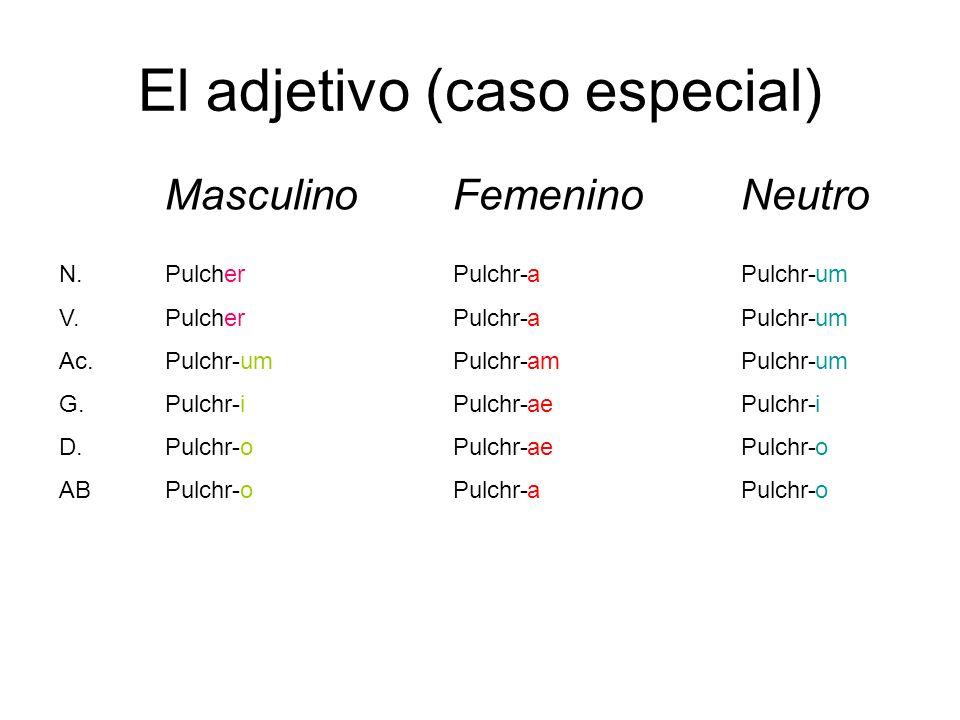 El adjetivo (caso especial) MasculinoFemeninoNeutro N. V. Ac. G. D. AB PulcherPulchr-Pulchr- Pulchr-Pulchr-Pulchr- um i o a am ae a um i o