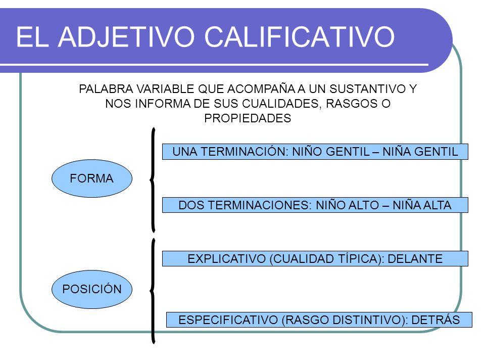 EL ADJETIVO CALIFICATIVO PALABRA VARIABLE QUE ACOMPAÑA A UN SUSTANTIVO Y NOS INFORMA DE SUS CUALIDADES, RASGOS O PROPIEDADES FORMA UNA TERMINACIÓN: NIÑO GENTIL – NIÑA GENTIL DOS TERMINACIONES: NIÑO ALTO – NIÑA ALTA POSICIÓN ESPECIFICATIVO (RASGO DISTINTIVO): DETRÁS EXPLICATIVO (CUALIDAD TÍPICA): DELANTE