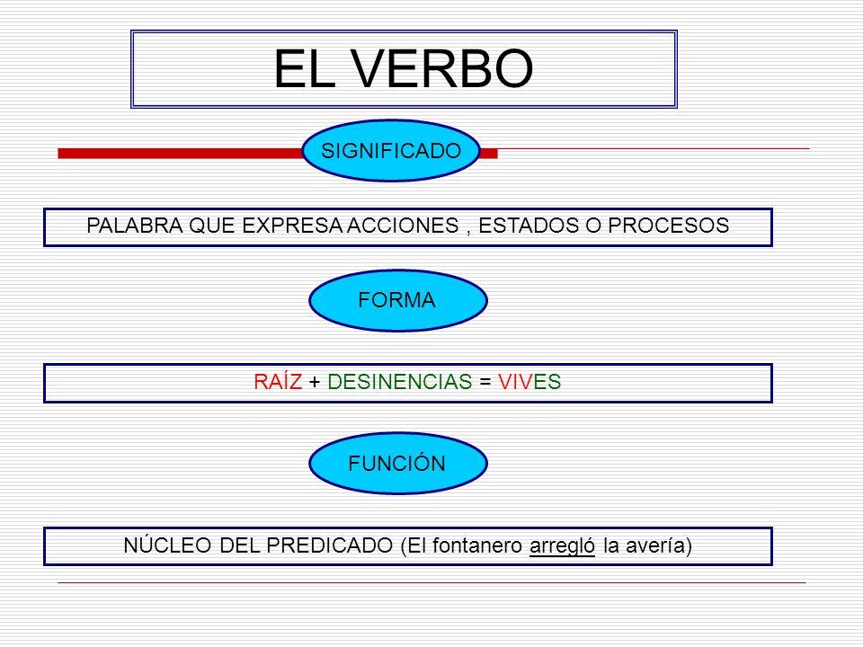 EL VERBO PALABRA QUE EXPRESA ACCIONES, ESTADOS O PROCESOS SIGNIFICADO FORMA RAÍZ + DESINENCIAS = VIVES FUNCIÓN NÚCLEO DEL PREDICADO (El fontanero arregló la avería)