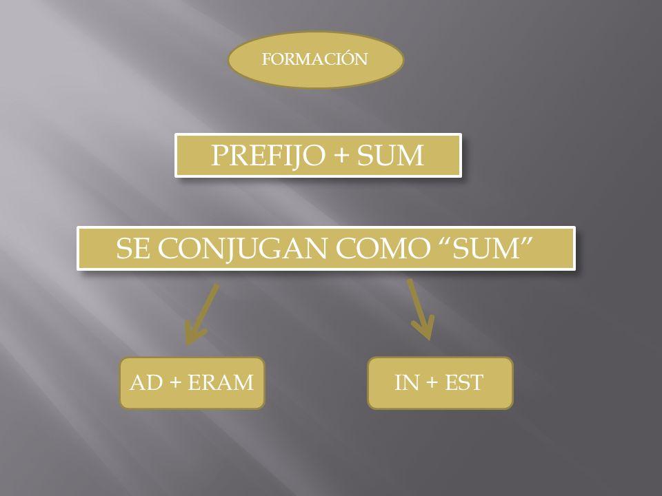 SE CONJUGAN COMO SUM PREFIJO + SUM FORMACIÓN AD + ERAMIN + EST
