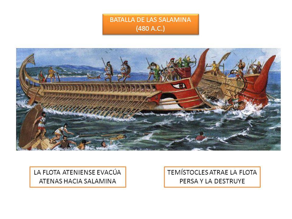 BATALLA DE LAS SALAMINA (480 A.C.) BATALLA DE LAS SALAMINA (480 A.C.) LA FLOTA ATENIENSE EVACÚA ATENAS HACIA SALAMINA TEMÍSTOCLES ATRAE LA FLOTA PERSA