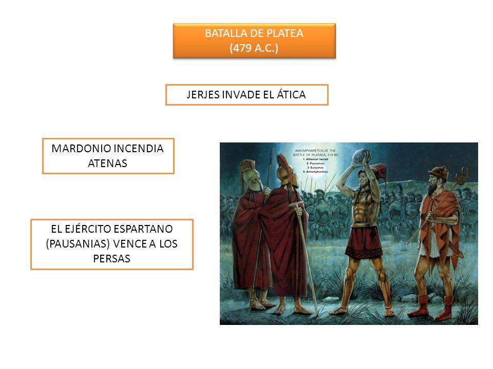 BATALLA DE PLATEA (479 A.C.) BATALLA DE PLATEA (479 A.C.) JERJES INVADE EL ÁTICA MARDONIO INCENDIA ATENAS EL EJÉRCITO ESPARTANO (PAUSANIAS) VENCE A LO