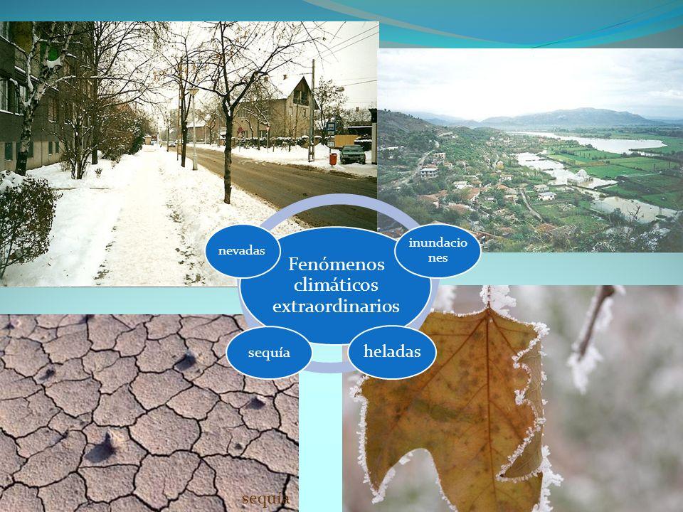 sequía Fenómenos climáticos extraordinarios inundacio nes heladas sequía nevadas