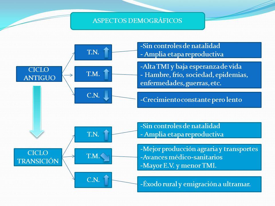 ASPECTOS DEMOGRÁFICOS CICLO ANTIGUO T.M.T.N.