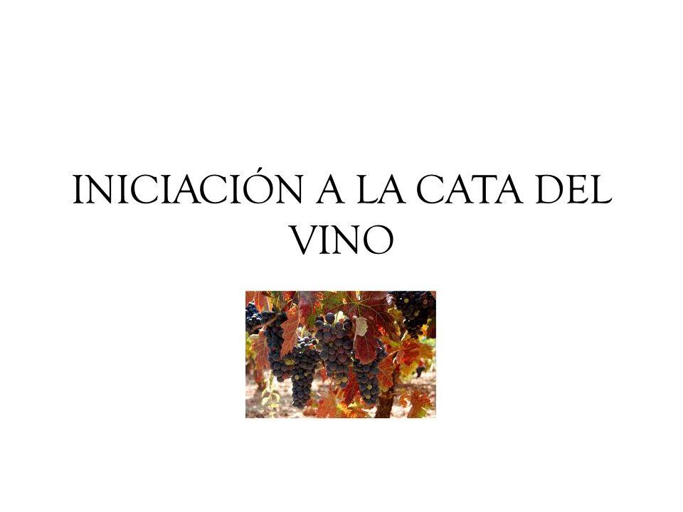 EL COLOR Nos da la primera información del vino.
