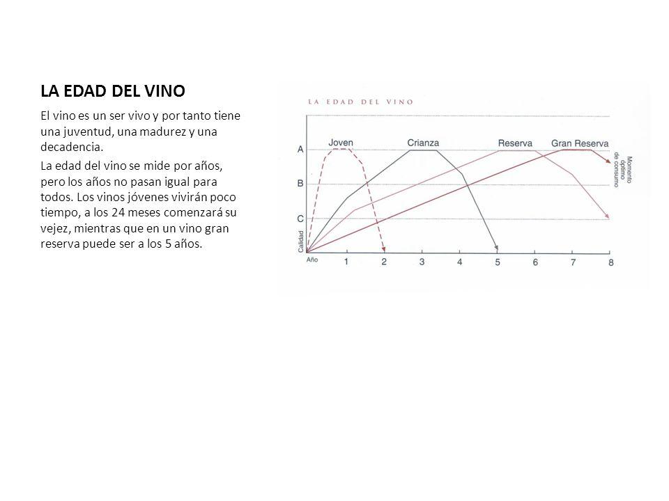 LA EDAD DEL VINO El vino es un ser vivo y por tanto tiene una juventud, una madurez y una decadencia. La edad del vino se mide por años, pero los años
