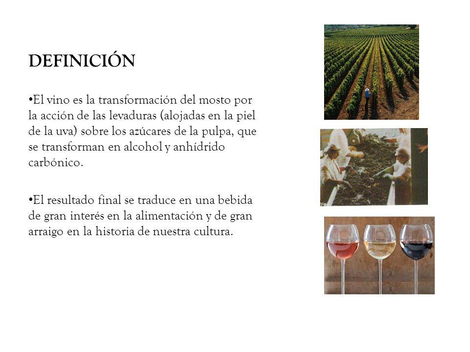 DEFINICIÓN El vino es la transformación del mosto por la acción de las levaduras (alojadas en la piel de la uva) sobre los azúcares de la pulpa, que s