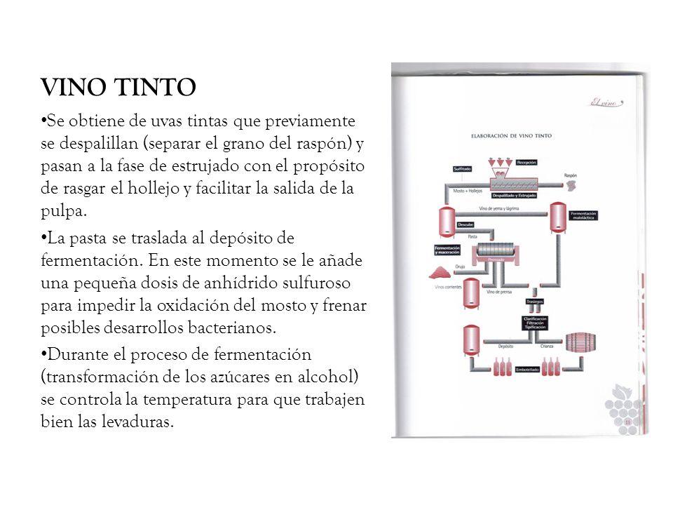 VINO TINTO Terminada esta fase se procede al descube (separado de lo que ya es vino y del hollejo).