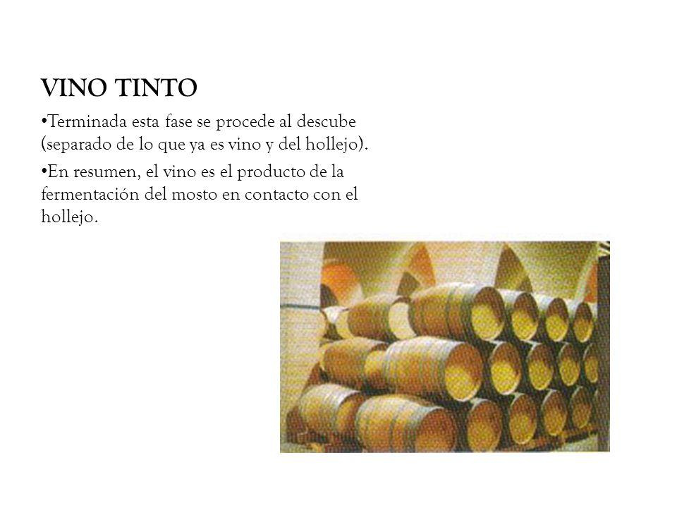 VINO TINTO Terminada esta fase se procede al descube (separado de lo que ya es vino y del hollejo). En resumen, el vino es el producto de la fermentac