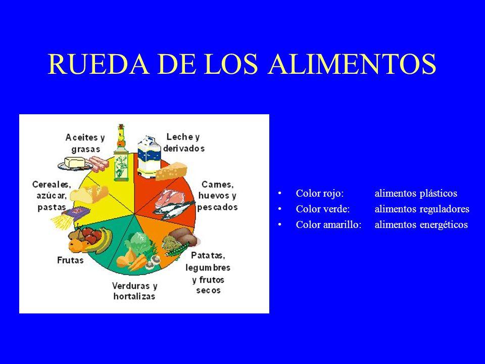 RUEDA DE LOS ALIMENTOS Color rojo:alimentos plásticos Color verde:alimentos reguladores Color amarillo:alimentos energéticos
