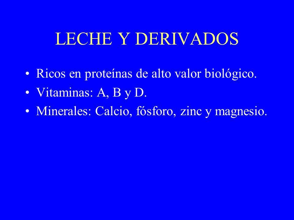 LECHE Y DERIVADOS Ricos en proteínas de alto valor biológico. Vitaminas: A, B y D. Minerales: Calcio, fósforo, zinc y magnesio.