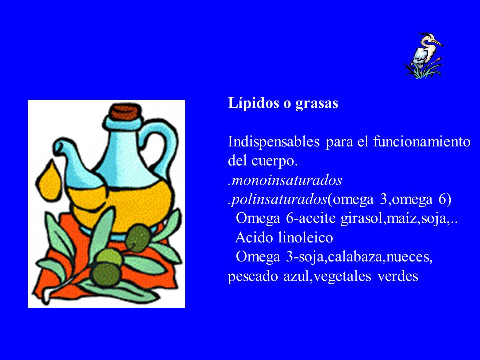 Lípidos o grasas Indispensables para el funcionamiento del cuerpo..monoinsaturados.polinsaturados(omega 3,omega 6) Omega 6-aceite girasol,maíz,soja,..