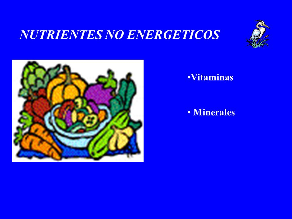 NUTRIENTES NO ENERGETICOS Vitaminas Minerales