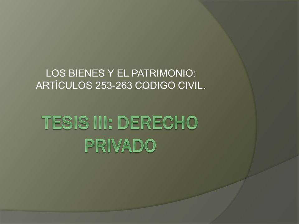 LOS BIENES Y EL PATRIMONIO: ARTÍCULOS 253-263 CODIGO CIVIL.
