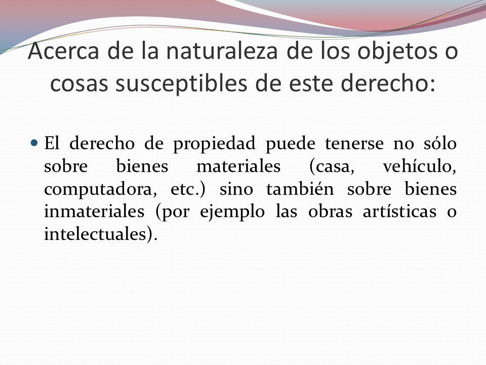 Acerca de la naturaleza de los objetos o cosas susceptibles de este derecho: El derecho de propiedad puede tenerse no sólo sobre bienes materiales (ca