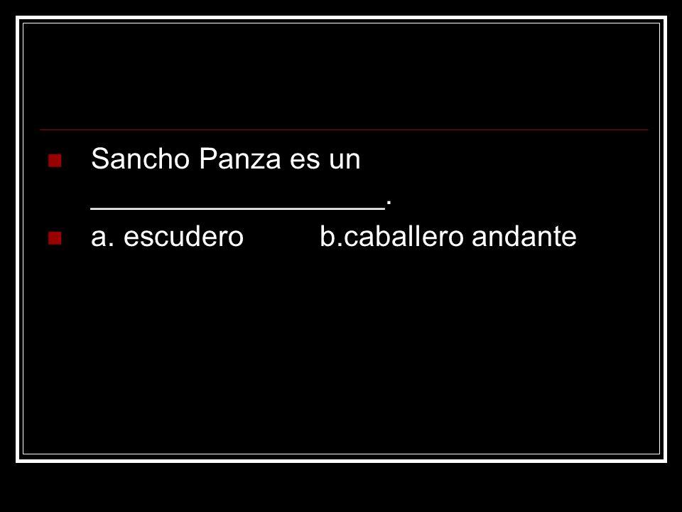 Sancho Panza es un __________________. a. escudero b.caballero andante