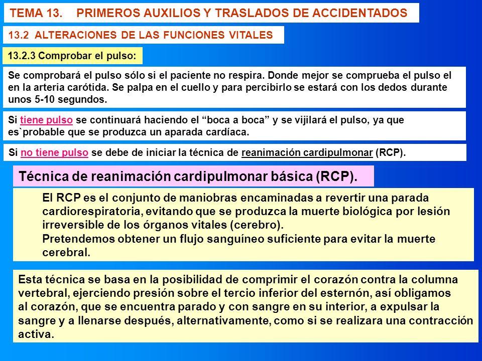 TEMA 13. PRIMEROS AUXILIOS Y TRASLADOS DE ACCIDENTADOS 13.2 ALTERACIONES DE LAS FUNCIONES VITALES Se comprobará el pulso sólo si el paciente no respir