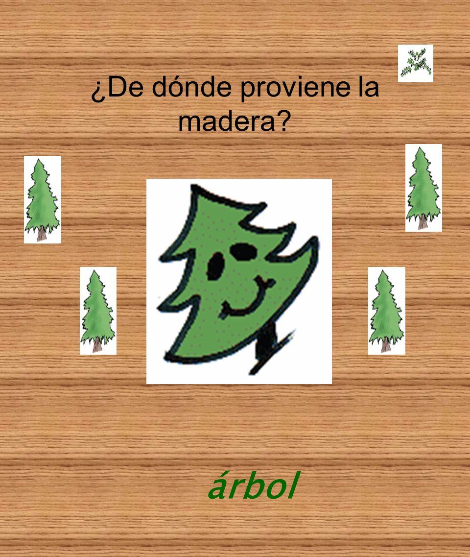 ¿De dónde proviene la madera? árbol