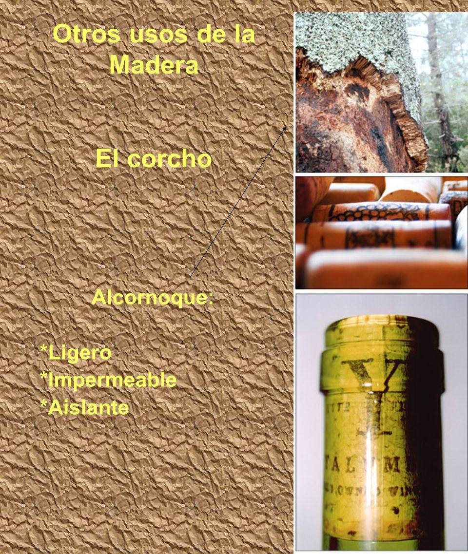 Otros usos de la Madera El corcho Alcornoque: *Ligero *Impermeable *Aislante