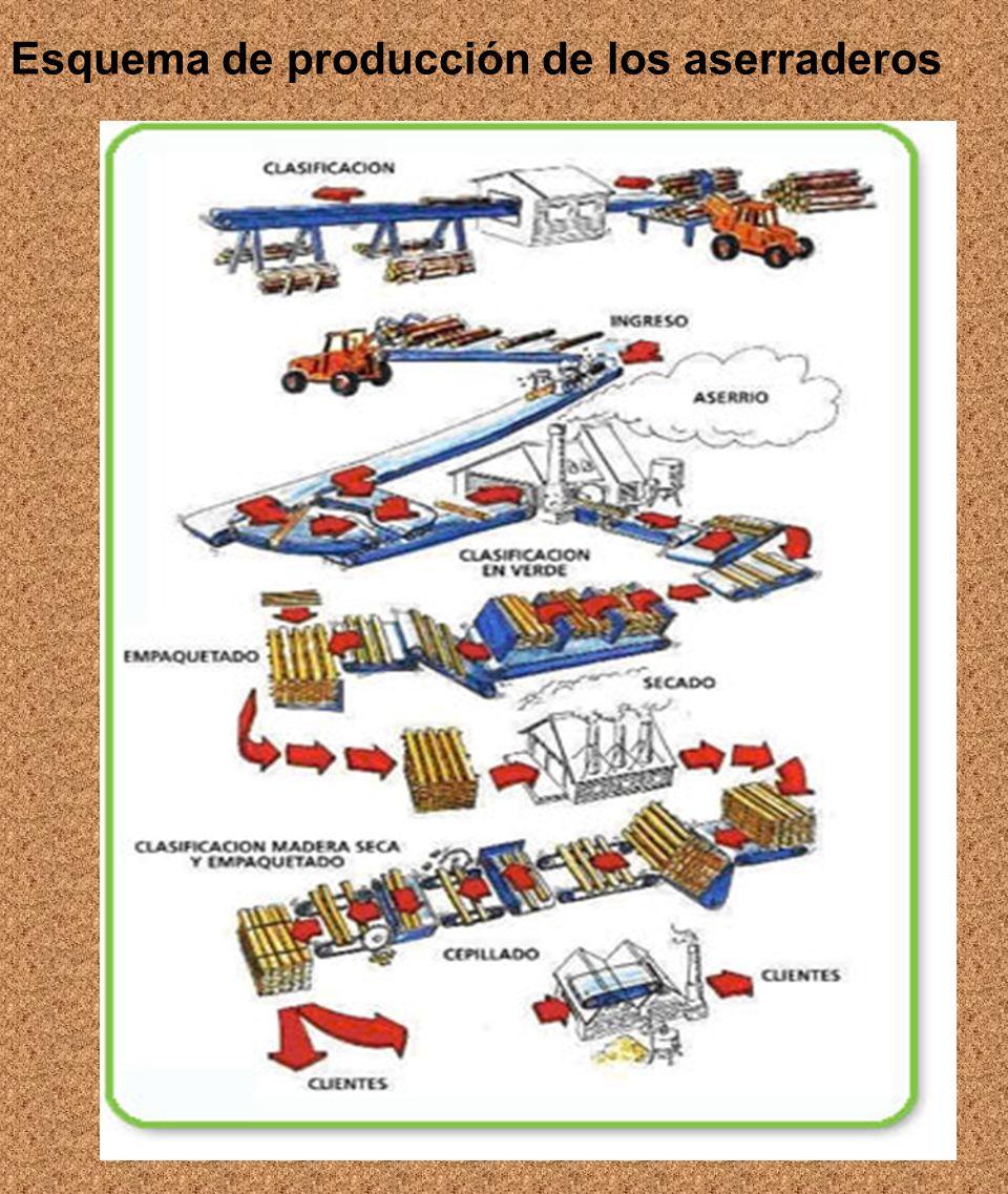 Esquema de producción de los aserraderos