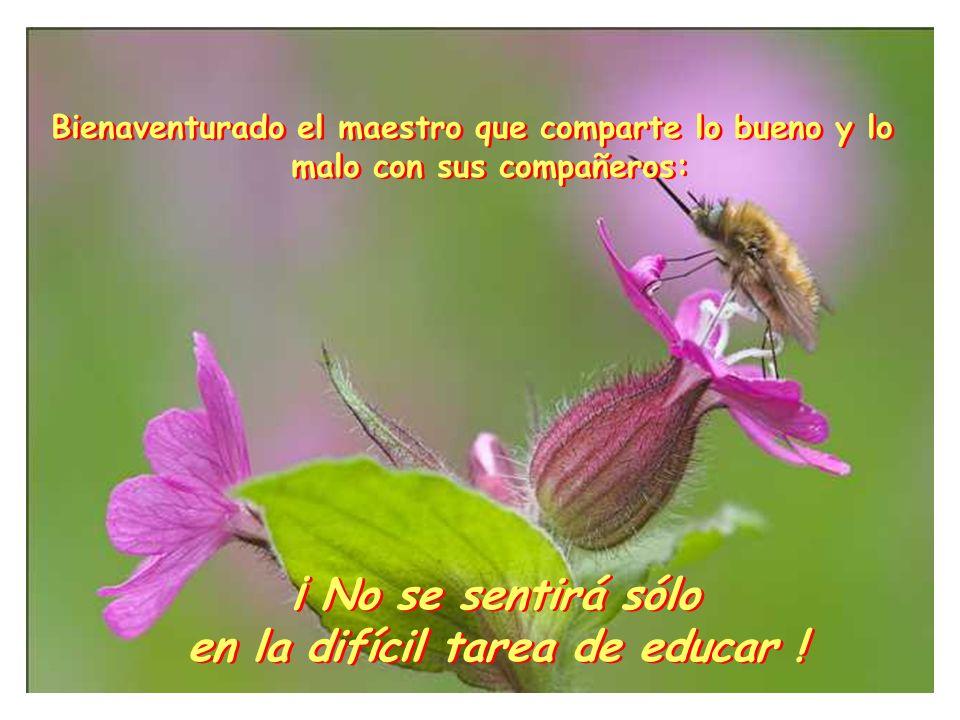 Bienaventurado el maestro que comparte lo bueno y lo malo con sus compañeros: ¡ No se sentirá sólo en la difícil tarea de educar .