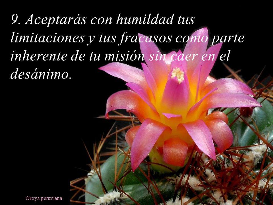 Oroya peruviana 9. Aceptarás con humildad tus limitaciones y tus fracasos como parte inherente de tu misión sin caer en el desánimo.