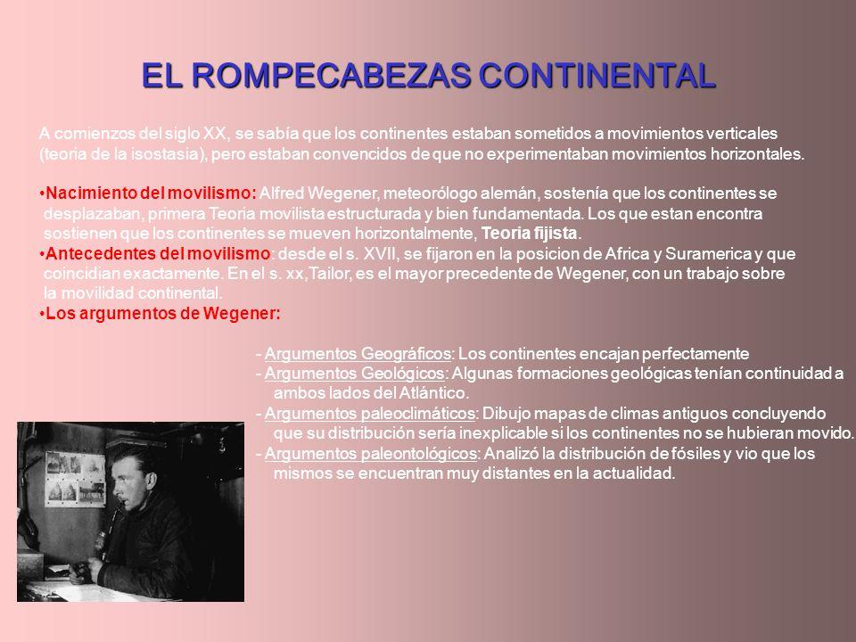 EL ROMPECABEZAS CONTINENTAL A comienzos del siglo XX, se sabía que los continentes estaban sometidos a movimientos verticales (teoria de la isostasia)