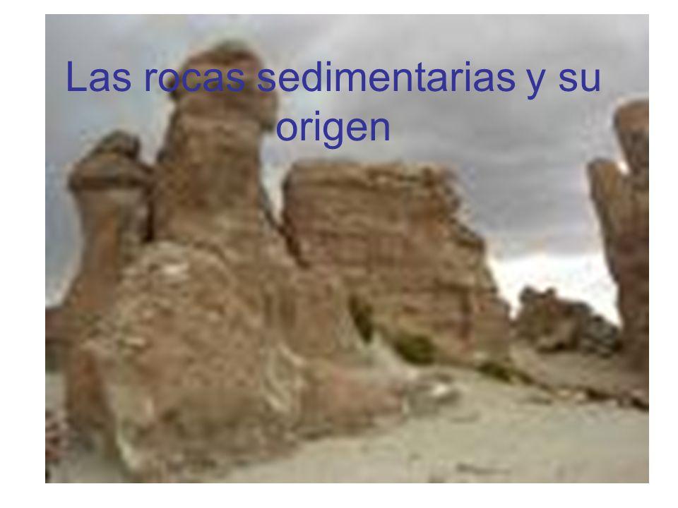 Las rocas sedimentarias y su origen