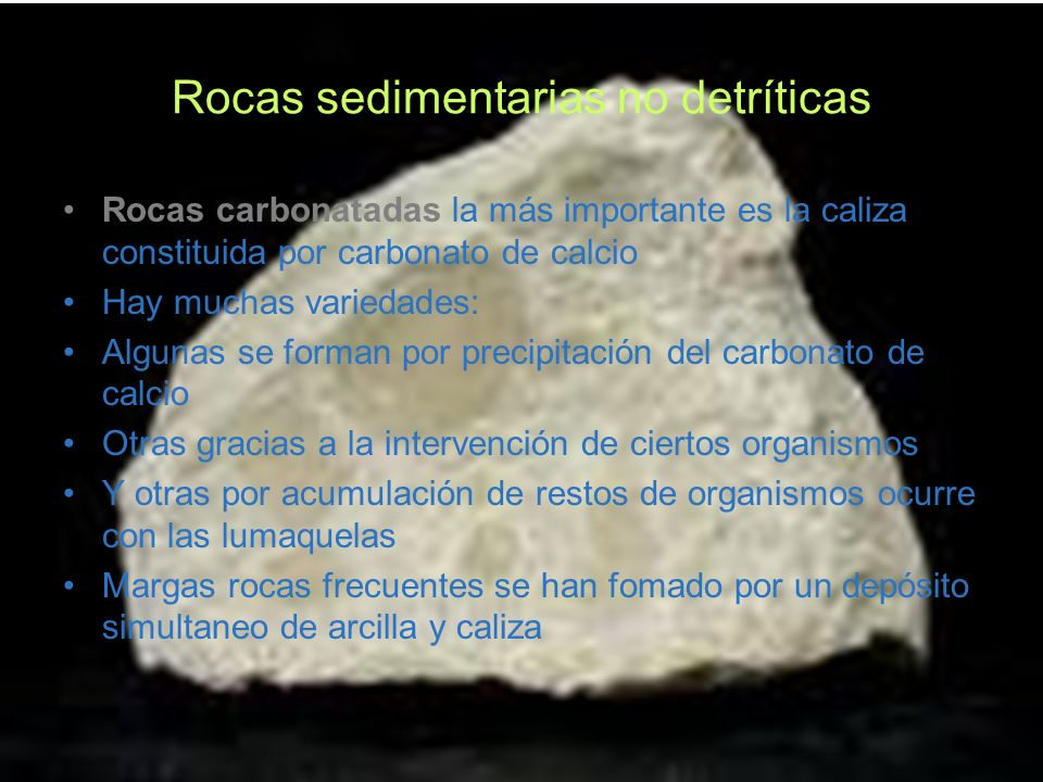 Rocas sedimentarias no detríticas Rocas carbonatadas la más importante es la caliza constituida por carbonato de calcio Hay muchas variedades: Algunas