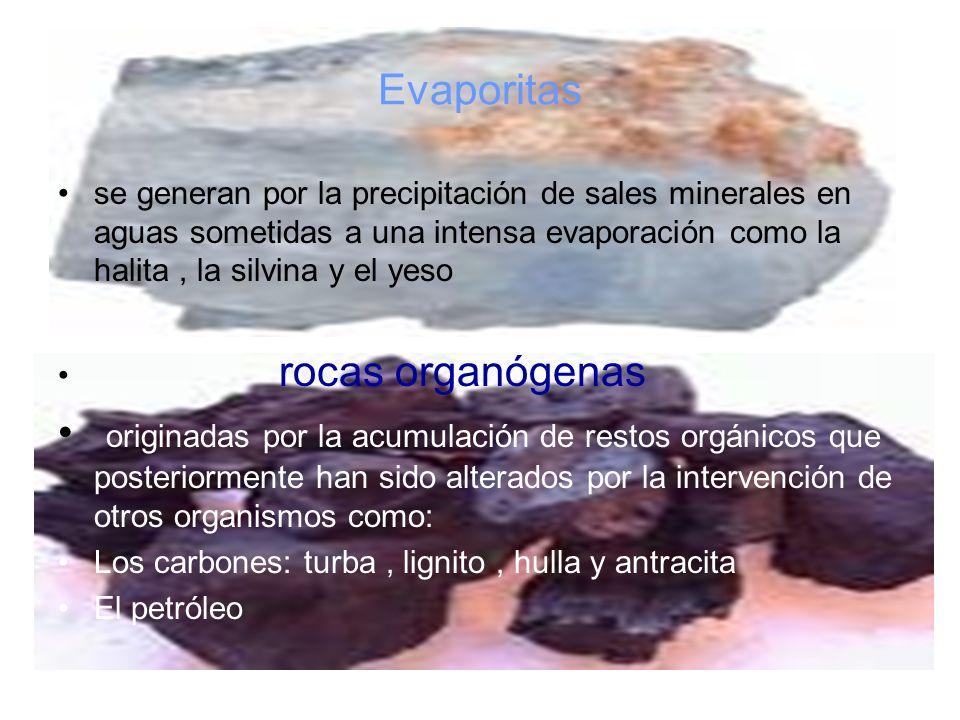 Evaporitas se generan por la precipitación de sales minerales en aguas sometidas a una intensa evaporación como la halita, la silvina y el yeso rocas