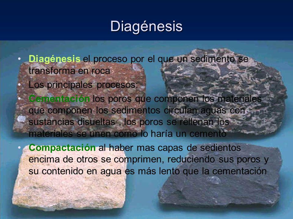 Diagénesis Diagénesis el proceso por el que un sedimento se transforma en roca Los principales procesos: Cementación los poros que componen los materi