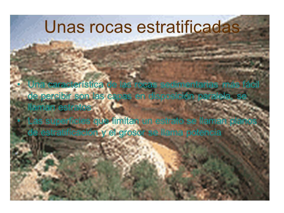 Unas rocas estratificadas Una característica de las rocas sedimentarias más fácil de percibir son las capas en disposición paralela, se llaman estrato