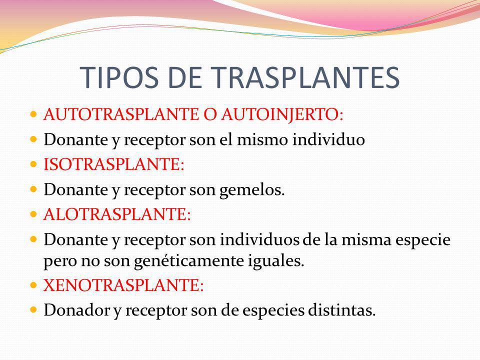 TIPOS DE TRASPLANTES AUTOTRASPLANTE O AUTOINJERTO: Donante y receptor son el mismo individuo ISOTRASPLANTE: Donante y receptor son gemelos. ALOTRASPLA