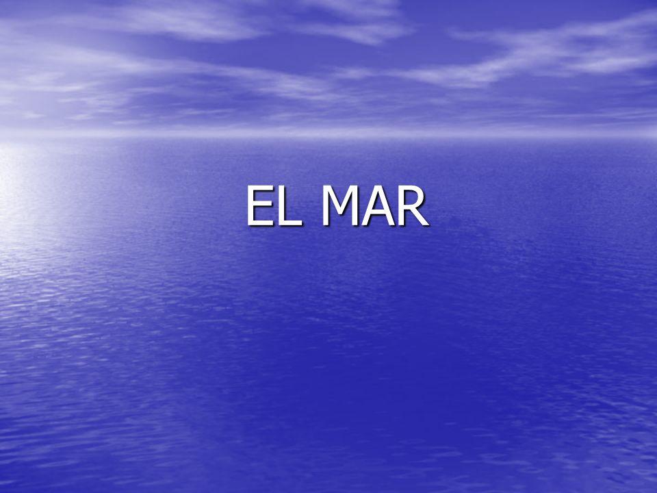 EL MAR EL MAR